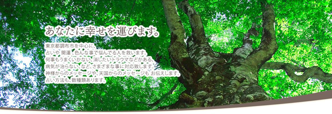 幸せ訪れる占い「阿毘恵(あびえ)」東京都調布市トップ画像